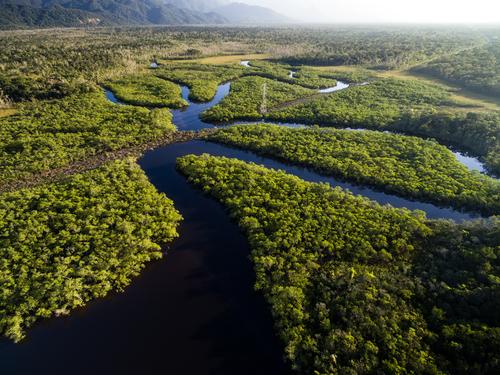 Viajes sin visa Amazonas